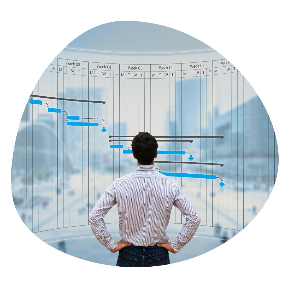 project management services